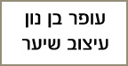 עופר בן נון - הדמיית שיער בירושלים