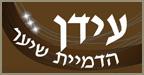 עידן לוי - הדמיית שיער בחיפה