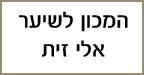 אלי זית מספרת המכון לשיער - הדמיית שיער בתל אביב